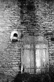http://c.q.f.d.cowblog.fr/images/imagesCAMAF679.jpg